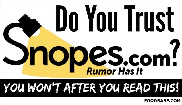 DO YOU TRUSTSNOPES.COM?